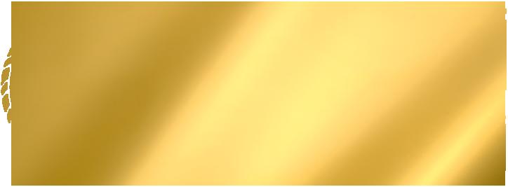 Modelli e Modellini